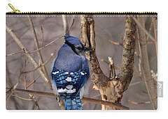 Shy Blue Jay  Carry-all Pouch by David Porteus