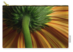 Shy Daisies Carry-all Pouch