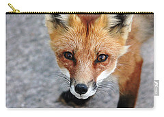 Carry-all Pouch featuring the photograph Shy Red Fox  by Debbie Oppermann