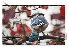 Shy Show Off Carry-all Pouch by Shelly Gunderson