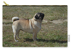 Side View Of A Pug Dog Carry-all Pouch by DejaVu Designs