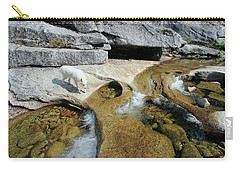 Carry-all Pouch featuring the photograph Sierra Wild by Sean Sarsfield