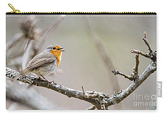 Singing Robin Carry-all Pouch by Torbjorn Swenelius