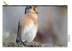 Singing This Song For You Carry-all Pouch