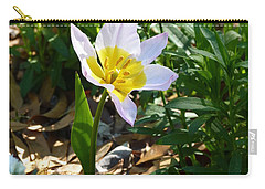 Carry-all Pouch featuring the photograph Single Flower - Simplify Series by Carla Parris