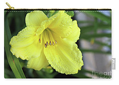 Single Yellow Day Lily Up Close Carry-all Pouch