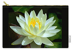 Carry-all Pouch featuring the photograph Single Yellow Water Lily by Kathleen Stephens