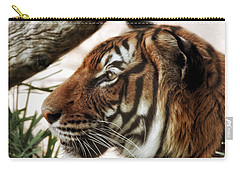 Carry-all Pouch featuring the photograph Sita Profile by Elaine Malott