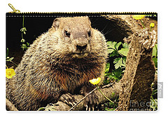 Sittin Among The Buttercups Carry-all Pouch by Tami Quigley