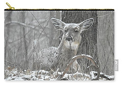 Carry-all Pouch featuring the photograph Sitting Out The Storm by Michael Peychich