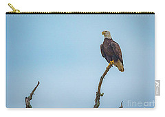 Sitting Patiently Carry-all Pouch by John Roberts