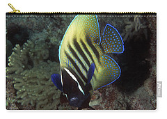 Six Banded Angelfish, Great Barrier Reef Carry-all Pouch