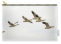 Carry-all Pouch featuring the photograph Six Snowgeese Flying by Mike Dawson