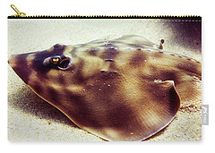 Carry-all Pouch featuring the photograph Skate by Anthony Jones