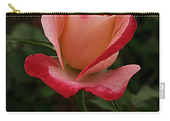 Skc 0435 Nature's Color Shading Carry-all Pouch by Sunil Kapadia