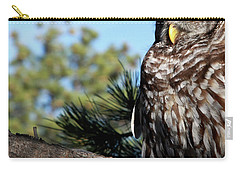 Sleeping Barred Owl Carry-all Pouch