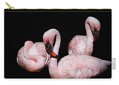 Carry-all Pouch featuring the photograph Sleeping Beauties by Rebecca Cozart