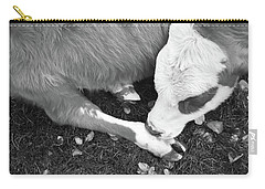 Sleeping Calf Bw Carry-all Pouch