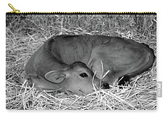 Sleeping Calf Carry-all Pouch