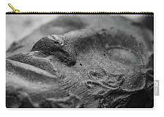 Carry-all Pouch featuring the photograph Sleeping by Clare Bambers