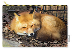 Sleeping Fox Carry-all Pouch by David Stasiak