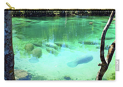 Sleeping Manatees Carry-all Pouch