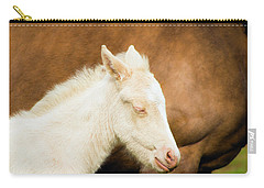 Sleepy Baby Horse Carry-all Pouch
