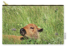Carry-all Pouch featuring the photograph Sleepy Calf by Alyce Taylor