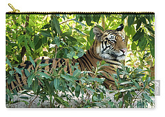 Sleepy Cat Carry-all Pouch by Pravine Chester