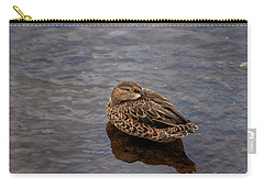 Sleepy Duck Carry-all Pouch by Arthur Dodd