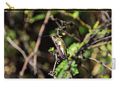 Sleepy Hummingbird Carry-all Pouch