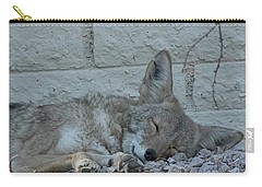 Carry-all Pouch featuring the photograph Sleepy Li'l Coyote by Anne Rodkin