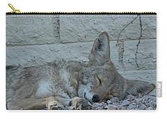 Sleepy Li'l Coyote Carry-all Pouch by Anne Rodkin