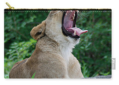 Carry-all Pouch featuring the photograph Sleepy Lion by Richard Bryce and Family