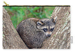 Carry-all Pouch featuring the photograph Sleepy Raccoon Sticking Out Tongue by Rob Sellers