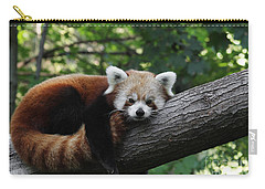 Sleepy Red Panda Carry-all Pouch