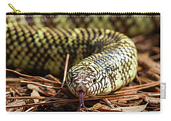 Slither Snake Carry-all Pouch by Arthur Dodd