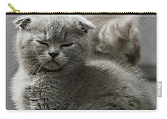 Slumbering Cat Carry-all Pouch by Evgeniy Lankin