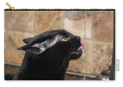 Slurp Carry-all Pouch by Karen Slagle
