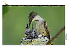 Carry-all Pouch featuring the photograph Small Family - D009336 by Daniel Dempster