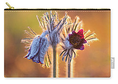 Small Pasque Flower, Pulsatilla Pratensis Nigricans Carry-all Pouch