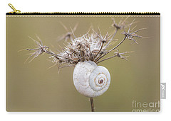 Small Snail Shell Hanging From Plant Carry-all Pouch