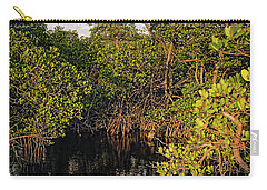 Carry-all Pouch featuring the photograph Small Waterway In Vitolo Preserve, Hutchinson Isl  -29151 by John Bald