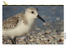Smallest Bird Carry-all Pouch