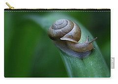 Snail In The Morning Carry-all Pouch