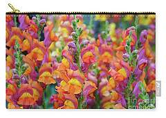 Snapdragon Rainbow Carry-all Pouch