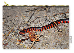 Carry-all Pouch featuring the photograph Snazzy Snake by Al Powell Photography USA