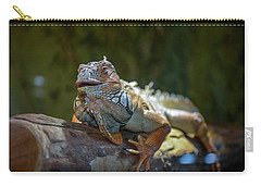 Snoozing Iguana Carry-all Pouch by Martina Thompson