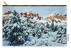 Snow 09-007 Carry-all Pouch by Scott McAllister