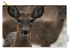 Snow Again 2 Carry-all Pouch